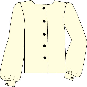 blouse with bishop's sleeve